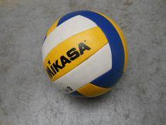 volleybal ...nodig ?