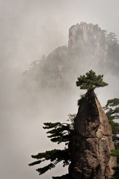 Huang Shan aka Yellow Mountain isn't one of China's sacred peaks but certainly looks the part.