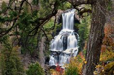 Autumn at Undine Falls by Cliff LaPlant, Yellowstone National Park, Wyoming