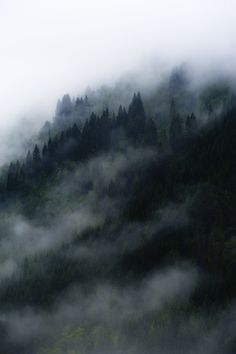 foggy mountains. #nature