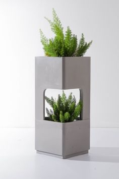 Grey by TREE SQUARE #planter #Concrete
