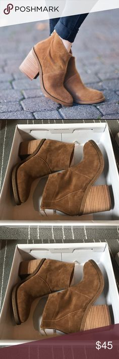 New in box Steve Madden booties New in box Steve Madden suede booties. Zipper in back for easy on and off. Cute booties Steve Madden Shoes Ankle Boots & Booties