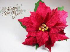 Многие слышали о таком растении как пуансеттия прекраснейшая (другое название молочай прекраснейший, рождественская звезда). Это растение, которое зацветает в самые холодные зимние месяцы. Цветы представляют собой небольшие пуговки-цветочки, обрамленные яркими прицветниками красных, розовых, белых тонов. Именно они придают растению праздничный, узнаваемо «рождественский» вид.
