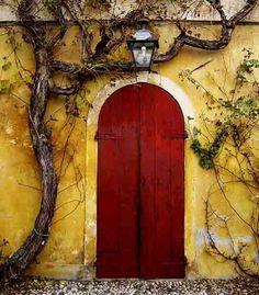Yellow + Tree + Vines + Deep Red, I do love a great door scheme