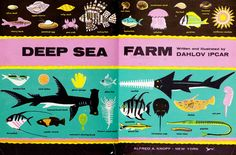 Deep Sea Farm, Dahlov Ipcar 60s