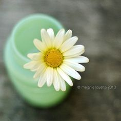 Little bud vases like this with single daisies would be fun for family style tables.