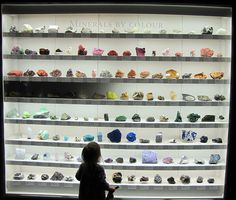 Get some giant minerals or fossil pieces as decor display. Rock Collection, Collection Displays, Beautiful Rocks, Technical Drawing, Displaying Collections, Rocks And Minerals, Natural History, Geology, Minerals