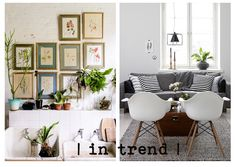 Along with flowers Lily's Florist loves indoor plants | this moodboard is our favorite 2 interiors |