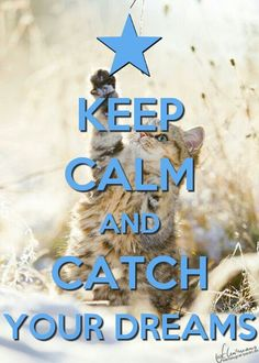 Keep calm and catch your dreams