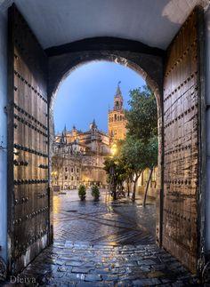 La Giralda from Los Reales Alcazares, Sevilla Spain