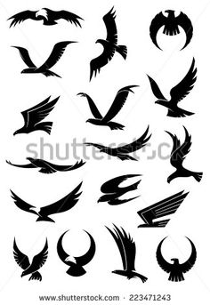 Flying eagle, falcon and hawk vector logo icons showing different wing positions in black silhouette, some with white heads for heraldic or tattoo design