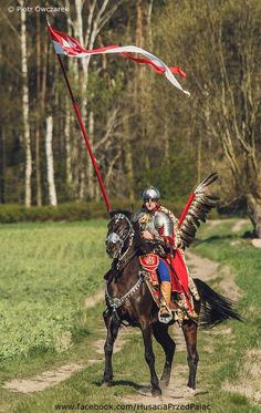Winged armor of a Polish Hussar. Battle Of Vienna, Poland History, Medieval World, Knight Armor, Arm Armor, Fiction, Eastern Europe, Ancient History, Warriors