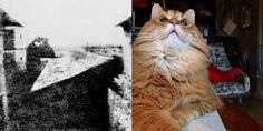 On the left is the first photograph ever taken (1826), View from the Window at Le Gras by French inventor Joseph Nicéphore Niépce. On the right is a cat who accidentally took a picture of itself (2013). It's estimated that in 2014, humans will take 880 billion photos (not including cats). In fact, 10% of all the photos ever taken were taken in the past 12 months. Read more at http://higherperspective.com/2015/02/understanding-time.html#cdX3iqMyugrGBV39.99