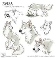 Animal Drawings Avias, age 23 moons, red team, she is second lead dog. Cute Animal Drawings, Animal Sketches, Cartoon Drawings, Cute Drawings, Dog Drawings, Arte Teen Wolf, Wolf Character, Character Sketches, Character Sheet