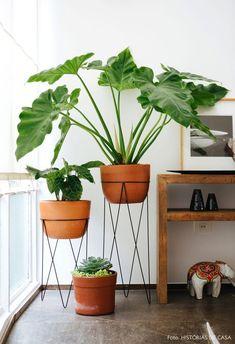 Hall de entrada tem suportes para plantas com vasos de barro e aparador de madeira rústica. House Plants Decor, Plant Decor, Decoration Plante, Hygge Home, Deco Floral, Interior Plants, Houseplants, Planting Flowers, Greenery