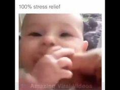 Viral videos & Вирусные видео - YouTube