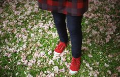 Oly's feet in a sea of blossoms. foto by V. Santos/Pics You.  #blossomflowers #sakura