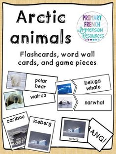 English Arctic Animals - Flashcards, word wall cards, and games! Arctic Animals, Zoo Animals, Game Pieces, Puzzle Pieces, Game Cards, Card Games, Grade 2 Science, Science Resources, Nonfiction