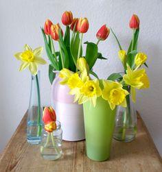 Tulpen und Narzissen, die ich in fünf verschiedenen Vasen in der ganzen Wohnung verteile. <3