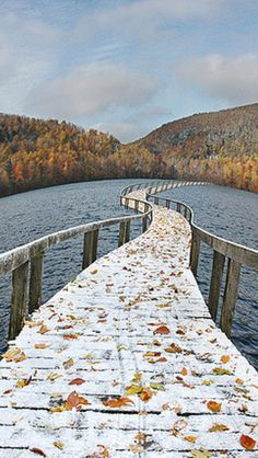The floating bridge source Flickr.com
