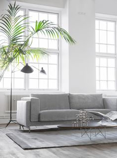 Industrial style loft | modern art deco vibes with a grey velvet sofa, streamlined coffee table and Fritz Nagel candlesticks | Palm fronds and an industrial style floor lamp adds an edge | huge industrial style windows | an old IKEA Nockeby was given a contemporary facelift by Swedish blogger Trendenser with a Bemz cover in Zinc Velvet