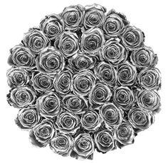 Silver Flowers | Buy Silver Flowers Online | Silver Rose | Silver Thistle Anniversary Flowers, Happy Anniversary, Dye Flowers, Blue Succulents, Send Flowers Online, Silver Centerpiece, Rainbow Roses, Christmas Flowers, Hydrangea Flower