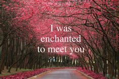 """Enchanted"" Taylor Swift.This song is my song for Alex- nothing tops the way I felt when I left our first date and played this song!"