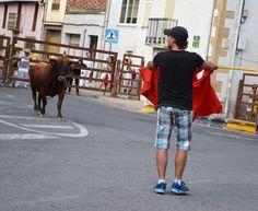 Santacara: Vacas Hermanos Ganuza de Artajona - (4) Street View, Cows, Siblings