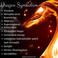 Dragon Spirit Animal The Dragon is cloaked with mystique and sewn together by the many legends and folklore surrounding its history. Animal Meanings, Animal Symbolism, Dragon Meaning, Dragon Tattoo Meaning, Dragon Tattoos, Dragon Energy, Dragon Quotes, Breathing Fire, Mythical Dragons