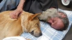Homeless man and his injured dog get Christmas Miracle