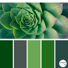 Keep Pantone's colour of the year Greenery going with this inspiration. Green Color Schemes, Kitchen Colour Schemes, Green Colors, Color Combos, Wall Colors, Paint Colors, Tiffany Green, Pantone Greenery, Colour Board