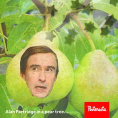 """""""Alan Partridge in a Pear Tree"""""""