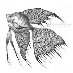 Print  5 x 5 - Ink Drawing - Black & White Fish - Black Lace Angelfish - Free Shipping to US - Fantasy Illustration - by Mitzi Sato-Wiuff
