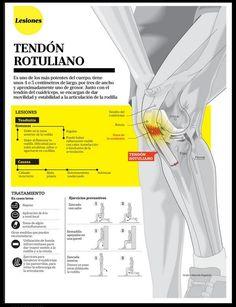 Todo lo que tienes que saber sobre lesiones del tendón rotuliano #fisioterapia #rehabilitación www.logarsalud.com