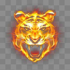 Fotos de Tigre Feroz Chama HD Best Camera For Photography, Download Hair, Dslr Background Images, Neon Wallpaper, Bat Signal, Abandoned Places, Vector Graphics, Superhero Logos, Clip Art