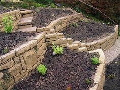 Terrace for Backyard Vegetable Garden??  This would be a great idea for the hill in backyard