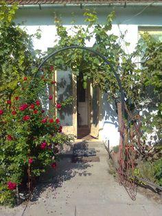 Lombház Hungary, Arch, Sidewalk, Outdoor Structures, Garden, Plants, Walkway, Garten, Arches