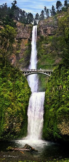 Multnomah Falls, Columbia Gorge, Oregon.I want to go see this place one day.Please check out my website thanks. www.photopix.co.nz