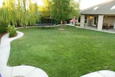 I want this backyard. Perfect for little kids including a tricycle track!