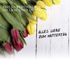 Münze Österreich AG - Münzprägestätte der Republik Österreich Celery, Vegetables, Mother's Day, Gifts, Veggies, Veggie Food, Vegetable Recipes