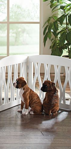 Gone are the days of the frumpy, cumbersome pet gate. In its place, our beautifully crafted Wavy Wood Pet Gate which not only looks stylish, but will blend right in with your home's décor.