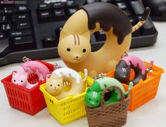 donut cat Family goes to work.