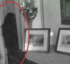 By TAPS (the ghost hunters, syfy) - this appears to be someone all in black.nyou can even see a reflection on the floor. Real Ghost Pictures, Ghost Images, Creepy Pictures, Ghost Photos, Creepy Images, Real Haunted Houses, Haunted Places, Haunted Dolls, Paranormal Pictures
