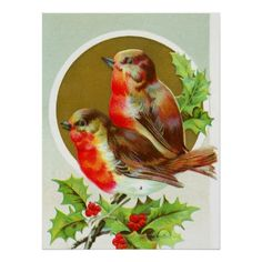 Shop Two Christmas robins Poster created by ANGELHELEN. Christmas Gifts For Mom, Vintage Christmas Cards, Vintage Cards, Holiday Cards, Christmas Stuff, Christmas Time, Bird On Branch, Two Birds, Old Fashioned Christmas
