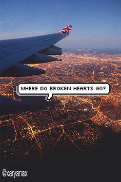 where the broken hearts go?????