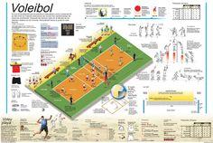 infografia de voleibol - Buscar con Google