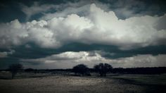 Natuurgebied de Zilk