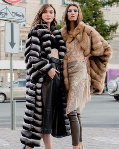 Chinchilla Fur Coat, Sable Fur Coat, Fur Accessories, Fur Fashion, Fur Jacket, Cute Animals, Passion, Fur Coats, Jackets