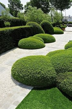 The word topiary is not common among many people. It is simply a way to give proper shape to the hedges and trim them in a perfect manner. This art of giving proper shape to the hedges is quite popular in all over the world. Garden Hedges, Topiary Garden, Garden Paths, Topiaries, Formal Garden Design, Garden Landscape Design, House Landscape, Modern Landscaping, Landscaping Plants
