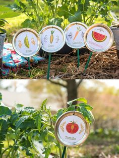 Learn how to turn mason jar lids into garden markers - and get a free printable to Mod Podge on!